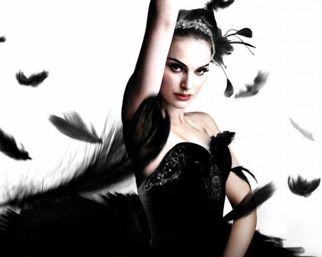cisne-negro-li
